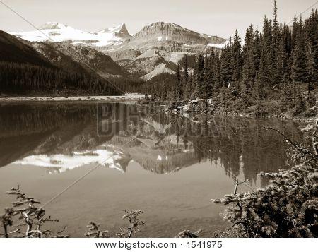 Bow Lake Reflection, Banff National Park, Canada