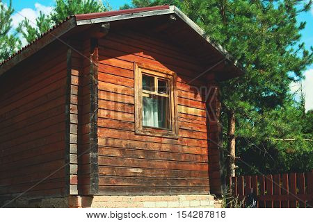 Simple wooden house in the forest gardening and construction concept