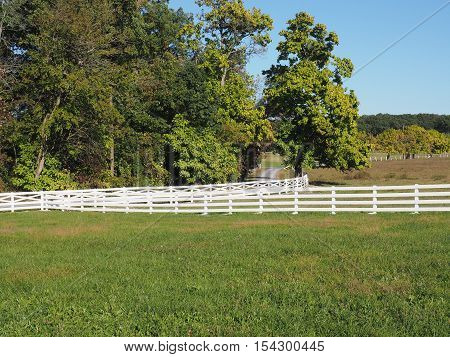 white fence by a field and a country lane in Pennsylvania