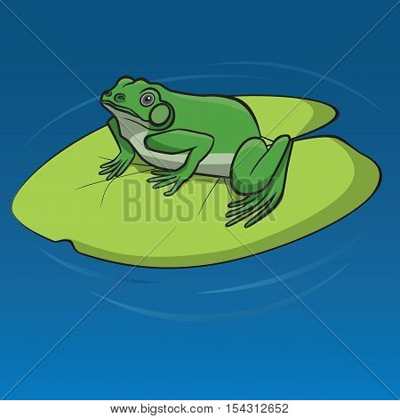 Green frog sitting on the leaf of water lily in the pond