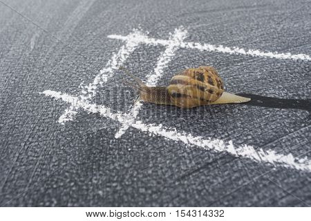 In Spiral Slow Journey