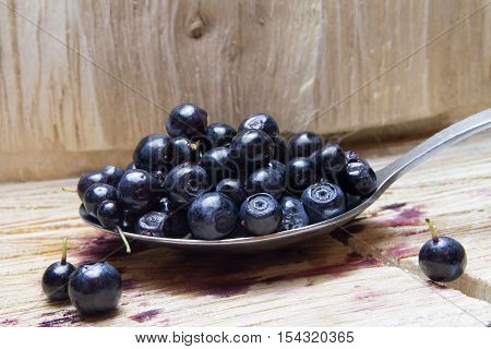 Bilberry. Blueberries On Spoon And Wooden Background.