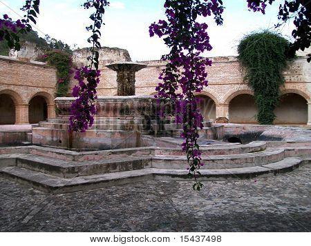 View of Fountain through Bouganvileas