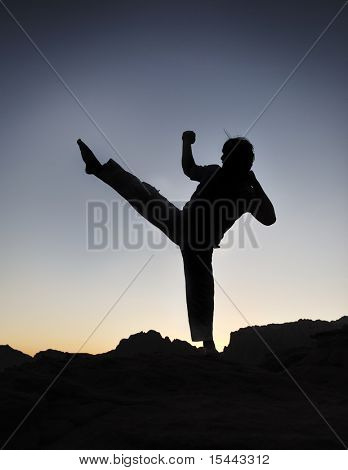 Karate fighter silhouette, young man doing an exercise of fighting sport, sunset, outdoor