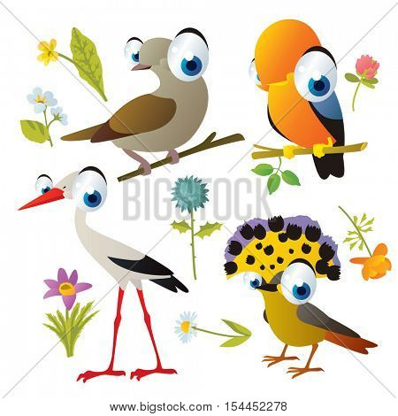 vector cute colorful cartoon isolated birds and flowers illustrations collection: dove, cock of the rock, stork, flycatcher