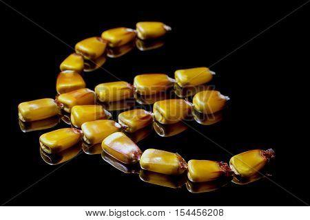 Corn kernels forming Euro symbol. Corn market. Corn kernels. Selective focus and shallow Depth of field