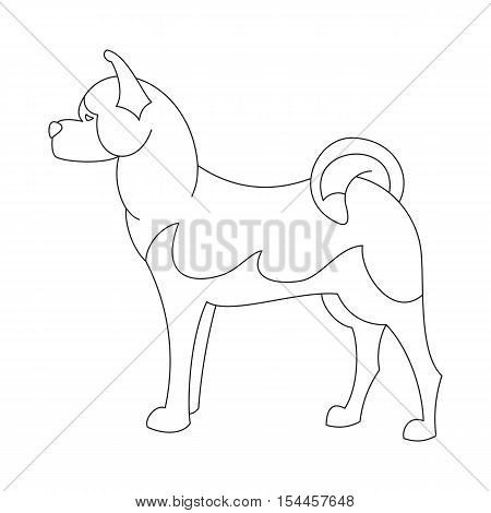 Akita dog line. Obedience hound in linear style, vector illustration
