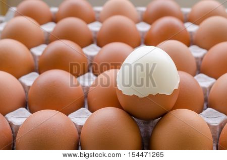 Boiled chicken egg peeled and placed on raw eggs. Group of fresh eggs in paper tray.