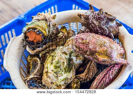 Variety Of Live Oysters And Shellfish For Bbq.