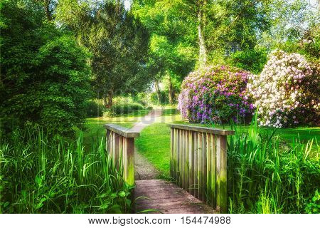 Spring green park. City park with green grass pond bridge trees and blooming rhododendron. Springtime landscape background. Beauty in nature