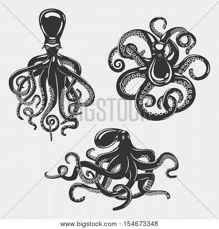 Black octopus or underwater swimming mollusk. Ocean cephalopod or octopus with swirl suction cups, set of isolated mollusk and octopus. May be used for nautical wildlife banner or zoology logo