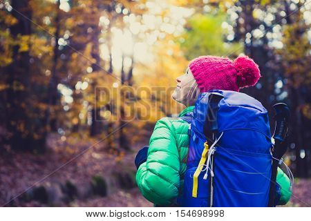 Hiking woman with backpack looking at inspirational autumn golden woods. Fitness travel and healthy lifestyle outdoors in fall season nature. Female backpacker tourist walking and looking around.