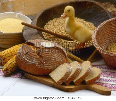 Breadandduck