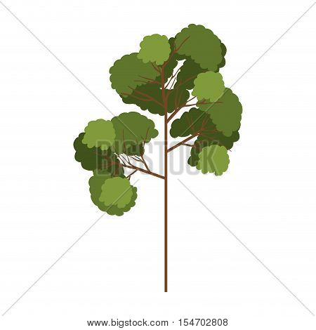 silhouette tree with leafy branches model three vector illustration