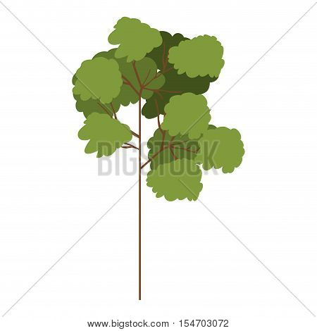 silhouette tree with leafy branches model seven vector illustration
