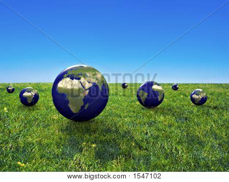 Terre Et Herbe