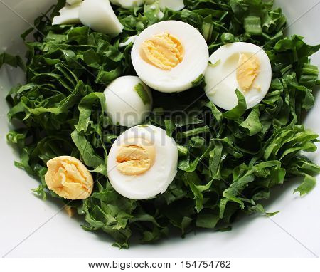 Salad with eggs and green spinach close up