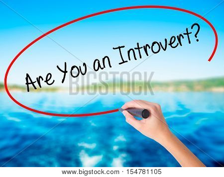 Woman Hand Writing Are You An Introvert? With A Marker Over Transparent Board