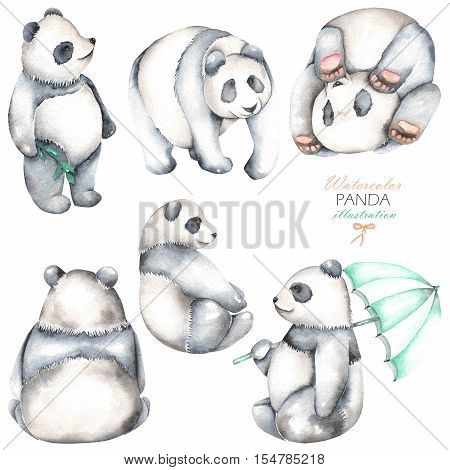 Collection, set of watercolor pandas illustrations, hand drawn isolated on a white background