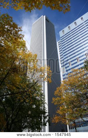 Aon Tower And Autumn Color