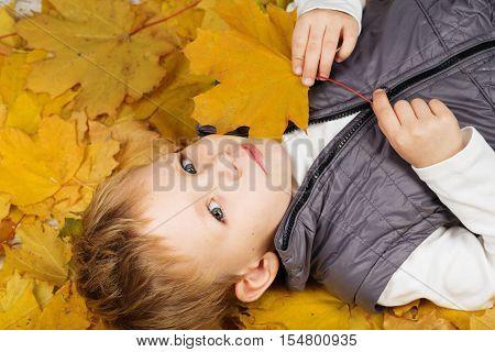 Portrait Of A Cheerful Little Boy Wallow In Fall Foliage.