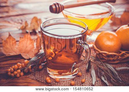 Tea of sea-buckthorn berries with honey. Autumn Still Life