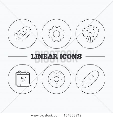 Muffin, donut and toast bread icons. Fresh bread linear signs. Flat cogwheel and calendar symbols. Linear icons in circle buttons. Vector