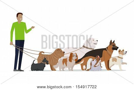 Professional dog walking banner. Young man walking with group of different breeds dogs on white background. Dog service. Vector illustration in flat style. Cartoon dog character, pet animal