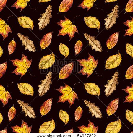 Seamless watercolor pattern of autumn leaves oak, maple, elm, watercolour autumn background of yellow, orange and red leaf, hand painted illustration for textile, wrapping paper, card, invitation