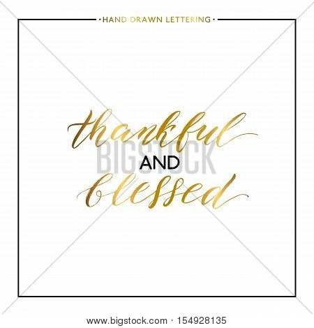 Thankful and blessed gold lettering isolated on white background, hand painted letter, golden vector thanksgiving text for greeting card, poster, banner, print, handwritten calligraphy