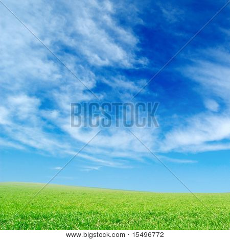 clouds and a green spring field