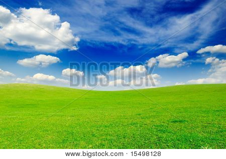 field and white clouds