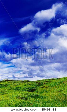cubierto de un pasto una colina sobre un fondo de cielo