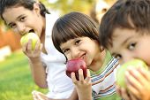 stock photo of eat grass  - Small group of children eating apples together - JPG