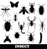 image of grub  - Insect set - JPG