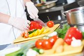 cook chef hands with knife preparing salad food in commercial kitchen poster