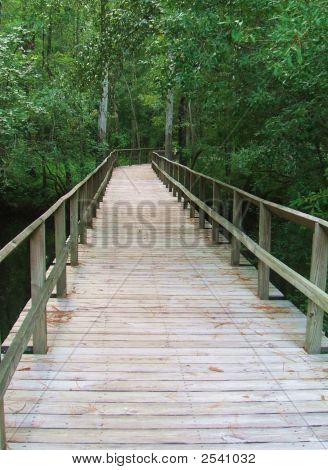 A Bridge Over Moore'S Creek.