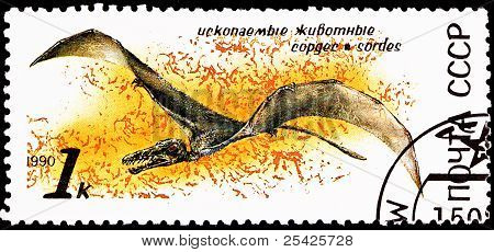 Flying Sordes Pterosaur Jurassic Period