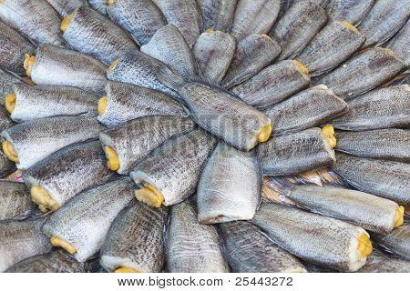 Dried Salted Snake Skin Gourami Fish