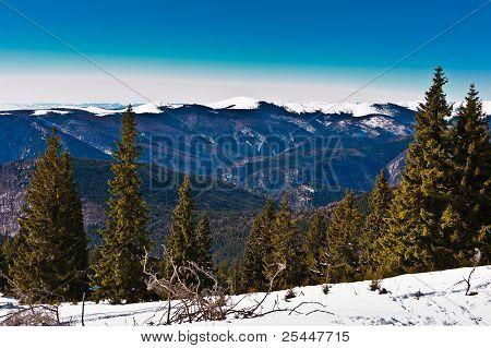 Wonderful Winter Landscape With Blue Sky