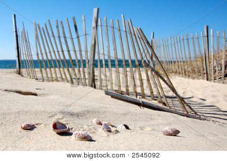 Cape Cod Beach 1