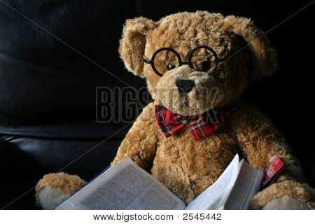 A Tedy Bear Reading A Book