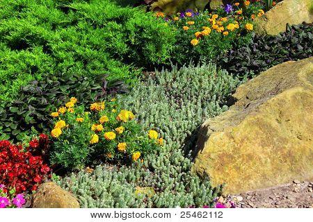 Diseño de paisaje: flores de colores y una piedra