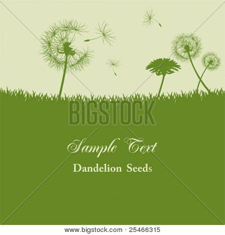 Dandelion seeds background. Illustration vector.