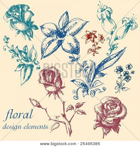 Floral design elements collection