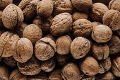 Top View Of Walnuts In Nutshells In Full Screen poster