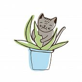 Adorable Nasty Cat Eating Houseplants. Naughty Kitten Gnawing Plant Growing In Pot. Problematic Beha poster