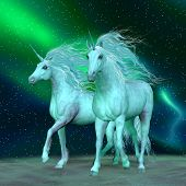 Northern Lights Unicorns 3d Illustration - The Unicorn Is A Mythical Creature That Has A Horse Body  poster