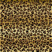 foto of camoflage  - PANTHER PATTERN - JPG