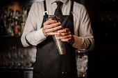 Professional Bartender Holding A Steel Cocktail Shaker Ready To Prepare A Fresh Cocktail At The Bar  poster